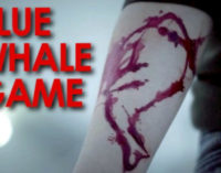 Youth caught while playing Blue Whale game in Odisha