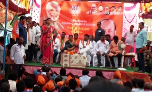 Woman who hurled eggs at Odisha CM draws large crowd in BJP's poll rally